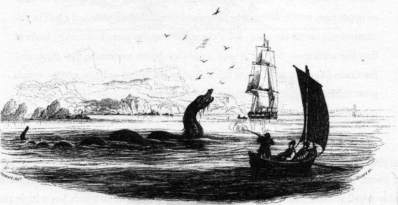 Sjøorm tegnet av Hans Strøm for biskop Erik Pontoppidans Norgeshistorie, 1755. (Wikipedia/fritt)