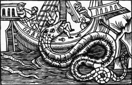 Tresnitt av en sjøorm laget i Firenze etter anvisning av Olaus Magnus, for hans historieverk om Nordens folk og natur. (Wikipedia/fritt)