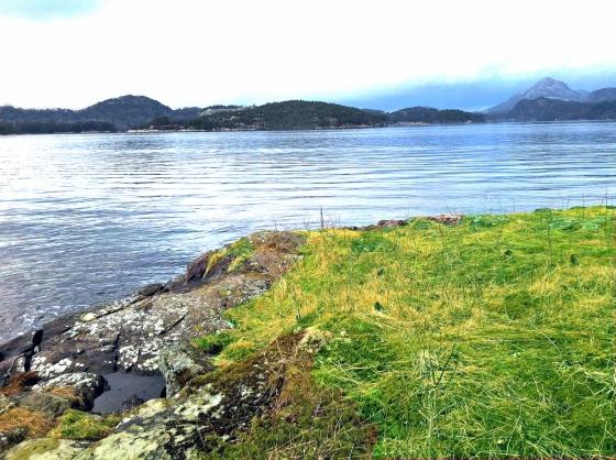 vedsjøen-neset