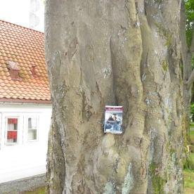 I et tre på Nordnes med Lisbeth
