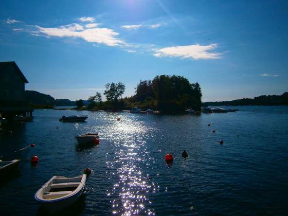 Fra Fanahammeren (Foto: Ingunn Lausund 2013)