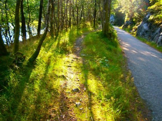 Veien opp fra Fana kirke til Hamretjønna (Foto: Ingunn Lausund)