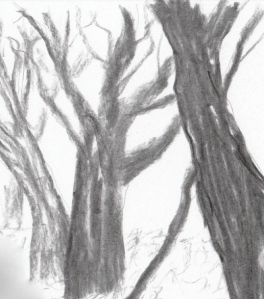 skog-MLR2013