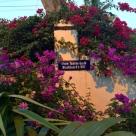 Charlotte_Amalie_St.Thomas-MLR3