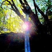 Dragonens sabel er den perfekte gave til alle som liker historiens sus.
