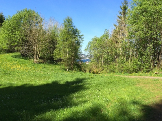 Før man går inn i skogen kan man få et siste glimt av den gamle gården Hope som ligger ved Grimstadfjorden.