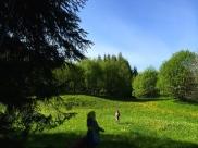 Hope-skogen4