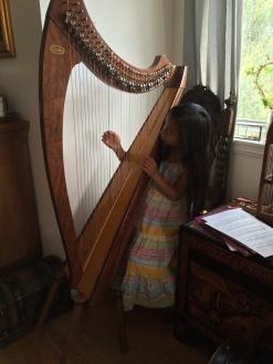 harpe-L2014