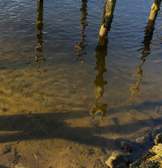Stranden. (Foto: May Lis Ruus)