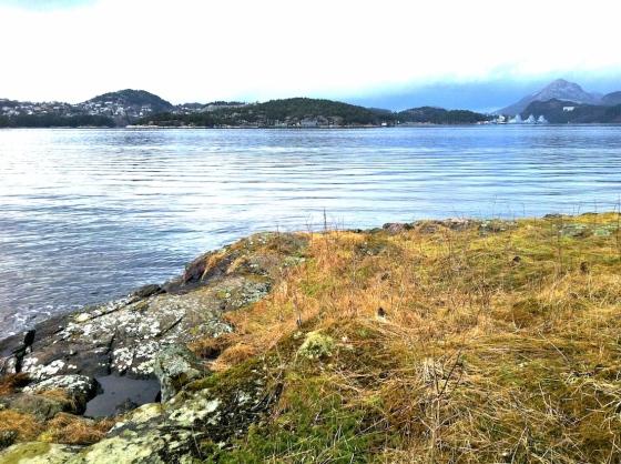 Hope-ved-sjøen