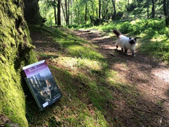 Lucie og Lykke på tur i Grimstadskogen