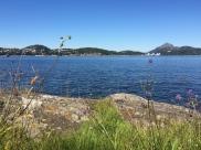 Hopsvika-Grimstadfjorden-MayLisRuus-