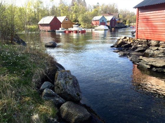 Hopsvika mot Grimstad-siden (Foto: May Lis Ruus